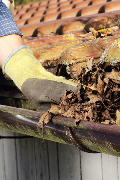 Guttering Clearing